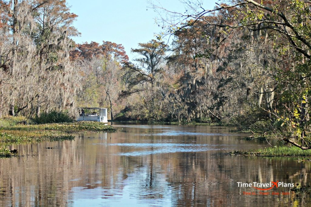 Into the Louisiana Bayou