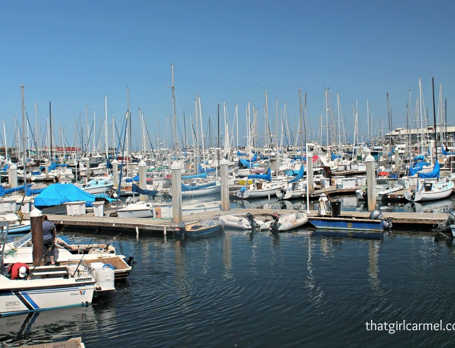 Monterey Bay Teaser + My California Wish List