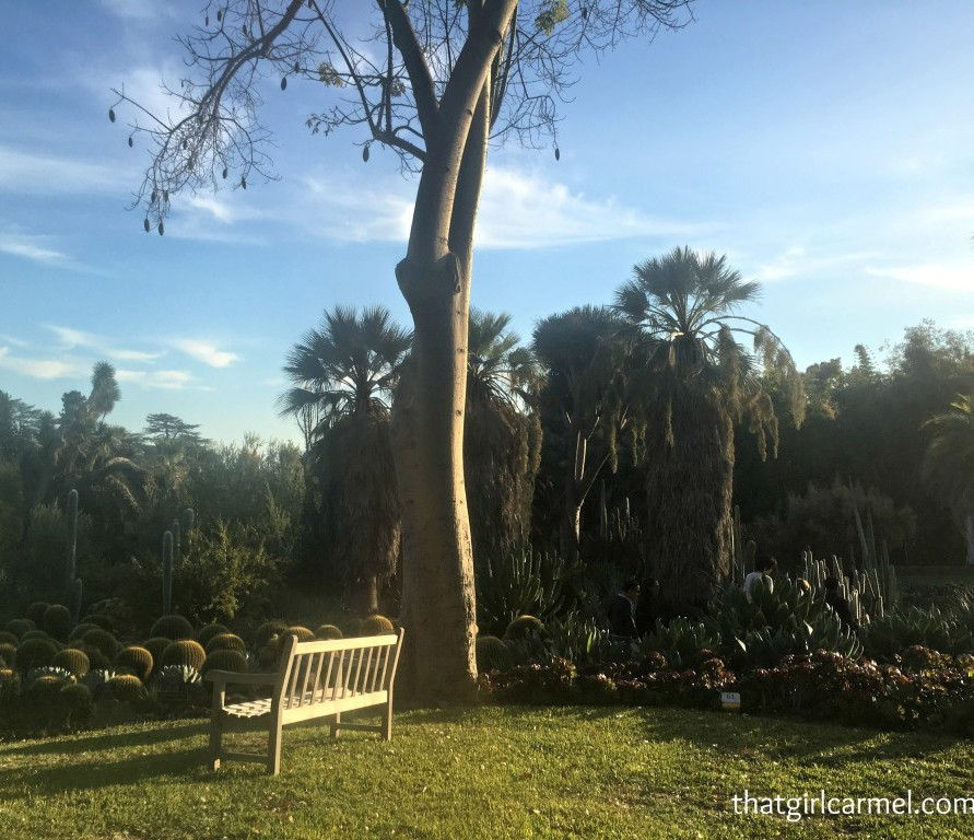 Tea, Gardens and Art at The Huntington in Pasadena