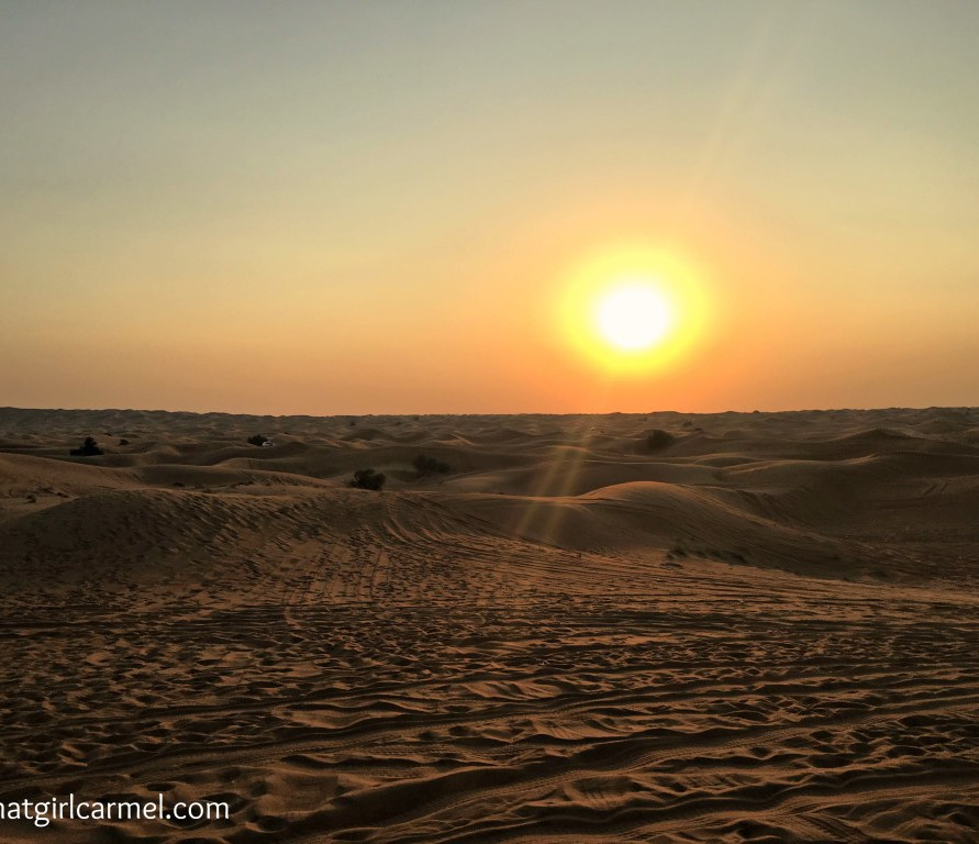 The Pros + Cons of a Dubai Desert Safari