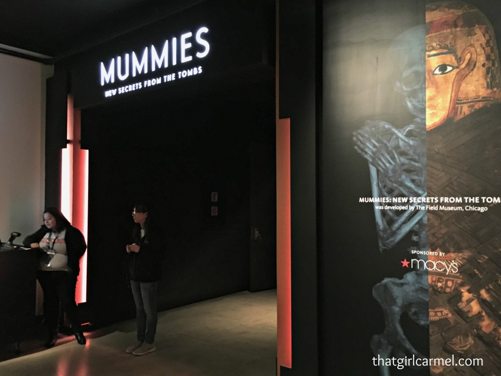 Admission to the Mummies exhibit is extra, but I've heard it's so worth it!