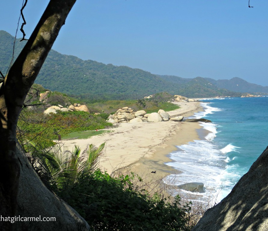 Welcome to the Jungle: Adventures in Tayrona