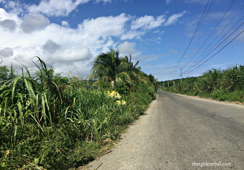 The stretch from Kingston to Port Antonio seemed liked the longest. Lots of greenery along the way...